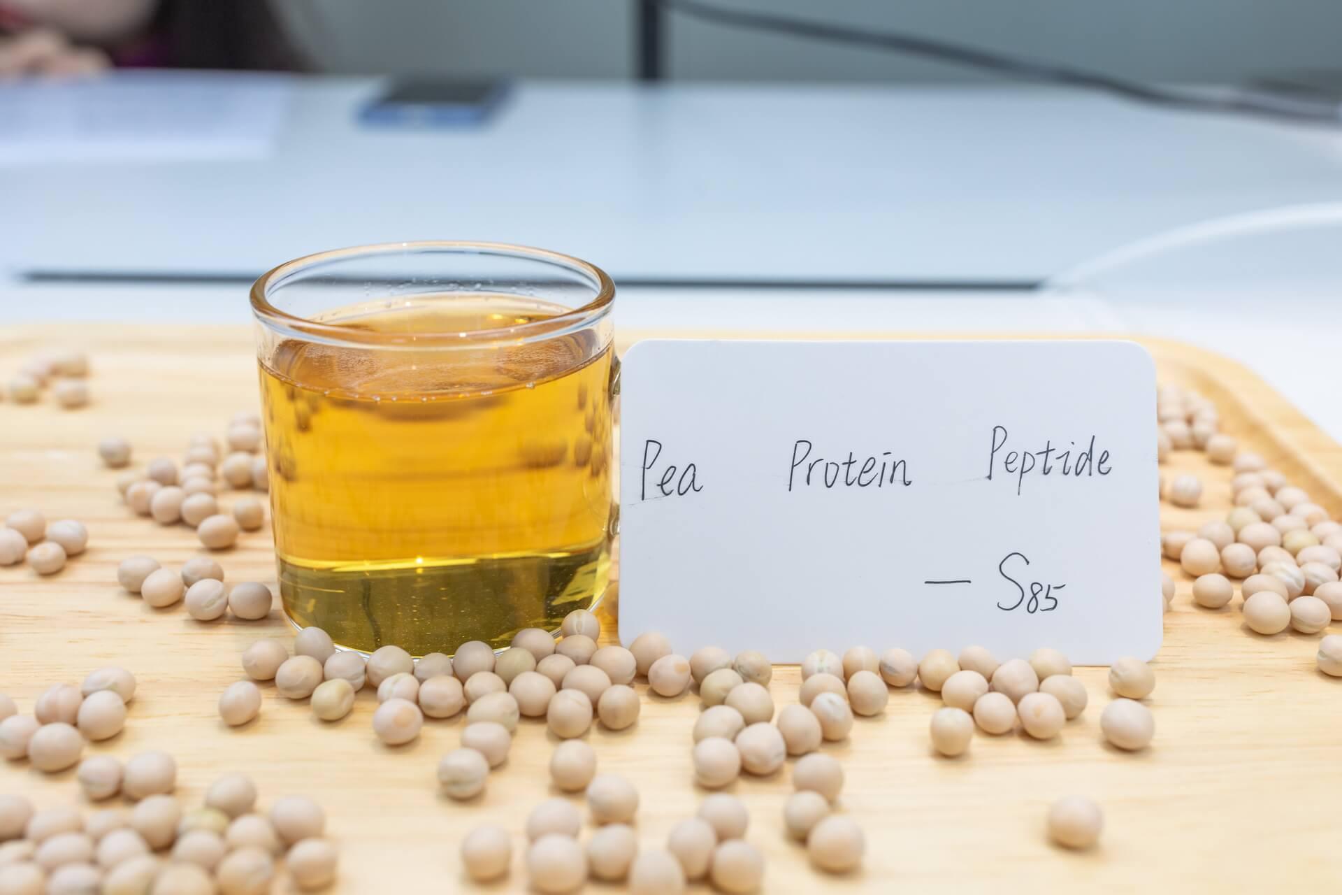 Hua Thai protein TDS- hydrolyzed pea protein S85B